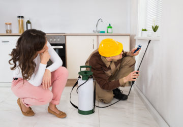 Home and Garden Pest Control Information